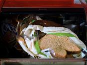 Bread (82/365)