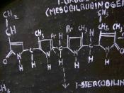 Chemical equation