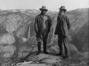U.S. President Theodore Roosevelt (left) and nature preservationist John Muir, founder of the , on Glacier Point in Yosemite National Park. In the background: Upper and lower Yosemite Falls.
