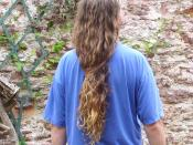 English: Male long hair in Western culture. Totnes, UK 2008 (Saturday afternoon, about tea time)