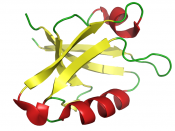 Cartoon representation of the PDZ domain of the GOPC (Golgi-associated PDZ and coiled-coil motif-containing protein) protein.