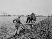 Boy ploughing at Doctor Barnardo's Industrial Farm / Un garçon labourant la terre à la ferme industrielle du Docteur Barnardo