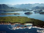 Central Clayoquot Sound, British Columbia, Vancouver Island, Canada --Base for my Sea Otter Story