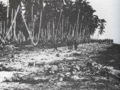 Dead Japanese soldiers on the sandbar at the mouth of Alligator Creek, Guadalcanal after the Battle of the Tenaru.