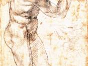 MICHELANGELO Buonarroti Male Nude Black chalk with white highlights, 40,5 x 22,6 cm Teylers Museum, Haarlem