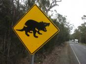 English: A road sign in Tasmania alerting drivers to the presence of Tasmanian Devils near that road.