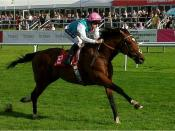 Frankel (British racehorse) winning at Doncaster, September 2010.