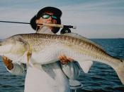 English: Saltwater Fly Fishing Guide Alec Griffin with a Louisiana Redfish.