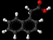 Ball-and-stick model of the 1-naphthaleneacetic acid molecule, a plant hormone in the auxin family. Colour code (click to show) : Black: Carbon, C : White: Hydrogen, H : Red: Oxygen, O