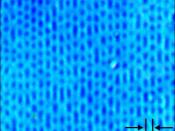 Compact disk optical microphotograph, pits and land clearly visible.