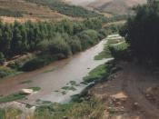 The Zarqa River