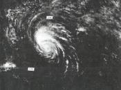 Hurricane Flossie