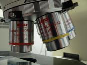 English: binocular microscope Français : Loupe binoculaire