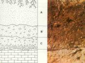 Example soil horizons. a) top soil and colluvium b) mature residual soil c) young residual soil d) weathered rock.