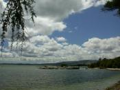 Lake Rotorua, second largest lake of the New Zealand North Island, near Rotorua, Rotorua District, Bay of Plenty