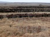 English: Near Loch Nuala Blanket bog with evidence of previous turf cutting covers much of the square.