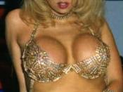 American porn star Jenna Jameson