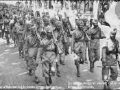 The 15th Sikhs being given a heroes' welcome upon their arrival in Marseille, France during the First World War.