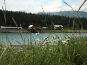 Cannery in Haines Alaska