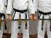 English: Rhee Tae Kwon-Do 1st, 2nd, and 3rd Dan black belts in October 2007.
