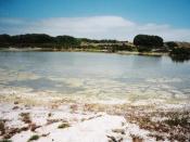Salt lake, Rottnest Island