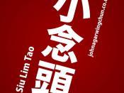 Siu Lim Tao (Angled)