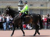 Mounted officer of the Metropolitan Police at Buckingham Palace, London