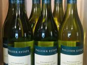 Palliser Estate Sauvignon Blanc Martinborough New Zealand