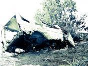 Tongan Car Wreck