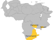 Yanomami Languages in Venezuela