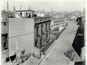 Cambridge Street, The Rocks 1901