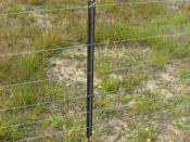 English: A waratah, a type of steel fence post, on a standard seven wire fence in New Zealand. The Waratah Fence post is the brand (trademark) that was owned by BHP in Australia and is now owned by OneSteel as the spinout long products company of BHP. The