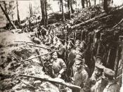 English: Russian trenches in the forests of Sarikamish Türkçe: Sarıkamış ormanlarında Rus askerlerinin kazmış olduğu hendekler.