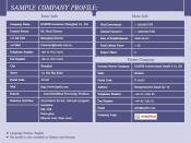 English: Sample Company Profile
