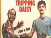 I Got a Girl (Tripping Daisy song)