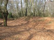 English: Epping Forest: Ambresbury Banks Another winter view of 110134. According to the information board, the Banks are believed to have been built around 500 BCE, and been in use as animal corrals until at least the Roman invasion in 55 BCE. Local lege
