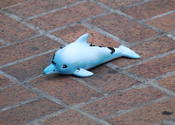 English: An oil-covered toy dolphin distributed at a MoveOn.org-sponsored rally against the energy corporation BP in Washington, D.C., on June 10, 2010. The protesters were angry at the ineffectiveness of BP's efforts to control the Deepwater Horizon oil