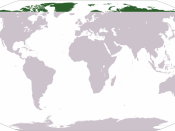 Location of the Arctic