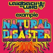 Natural Disaster (Example song)