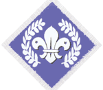 Chief Scout Diamond Award (Explorer Scouts or Scout Network)