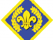 Chief Scout Platinum Award (Explorer Scouts or Scout Network)