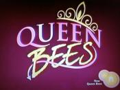 Queen Bees (TV series)
