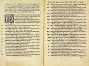 Disputatio pro declaratione virtutis indulgentiarum, 95 theses