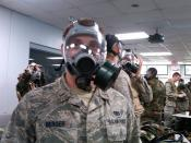 Berger Gas Mask