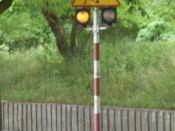 Children traffic signal