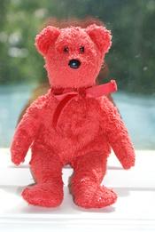 English: Sizzle the Bear.