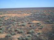 The Nullarbor Plain viewed from the Indian Pacific