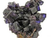 Fluorite :: Locality: Annabel Lee mine, Harris Creek Sub-District, Illinois - Kentucky Fluorspar District, Hardin County, Illinois, USA (Locality at mindat.org) :: An old Annabel Lee Mine fluorite cluster, with crystals of very deep purple, measuring to a