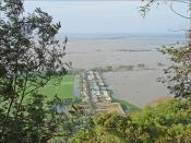 Rizières inondées à la frontière entre le Vietnam et le Cambodge