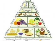 English: Loma Linda University Vegetarian Food Pyramid